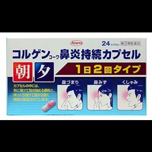 코와 코루겐코와 비염 24캡슐