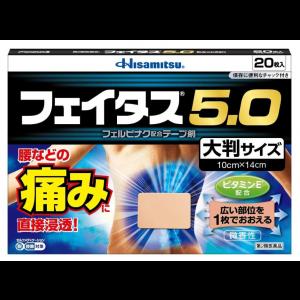 페이타스 5.0 대형 (20매)